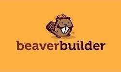 Beaver Builder Plugin Pro